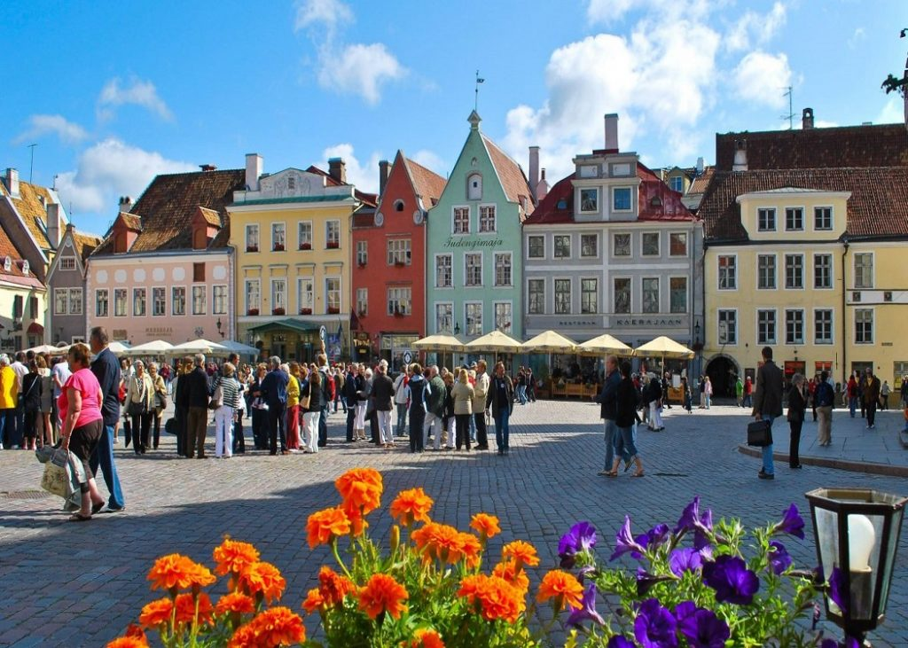 Tallinn Estonia Old Flowers City Travel Cities Town Wallpaper HD